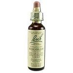 Hornbeam 20 ml by Bach Flower Remedies 20 mL