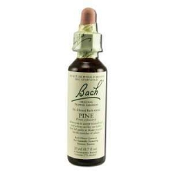Pine 20 ml by Bach Flower Remedies 20 mL