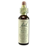 Water Violet 20 ml by Bach Flower Remedies 20 mL