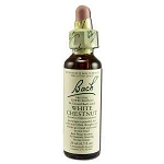 White Chestnut 20 ml by Bach Flower Remedies 20