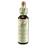 Wild Rose 20 ml by Bach Flower Remedies 20 mL