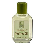 Eco-Harvest Tea Tree Oil 0.5 fl oz by Desert Essen
