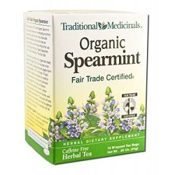 Organic Spearmint Tea 16 Tea Bags by Traditional M