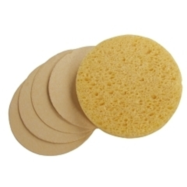 Round Compressed Sponge Natural 24 Pack