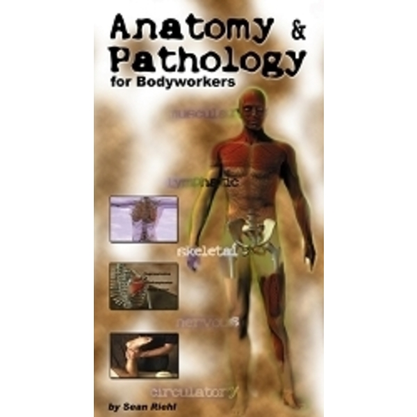 Anatomy & Pathology DVD