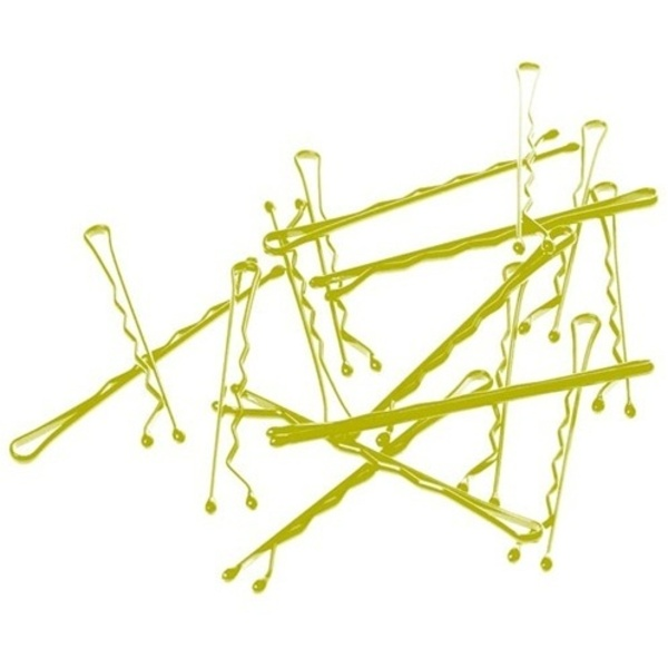"2"" Bobby Pins / Blonde / 750 Count (C5727)"