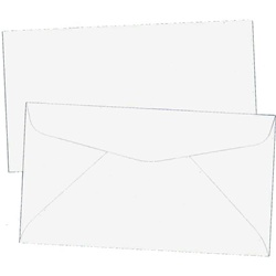 Envelope for Gift Certificates / 25 Pack (CZ701)