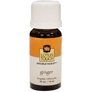 Lotus Touch Ginger Essential Oil 10 mL (LTE1032)