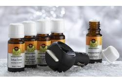 Lotus Touch Lotus Love Essential Oil Kit (LTE3080)