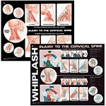 "Whiplash Chart 2-sided 20"" X 24"" Laminate (573 011"