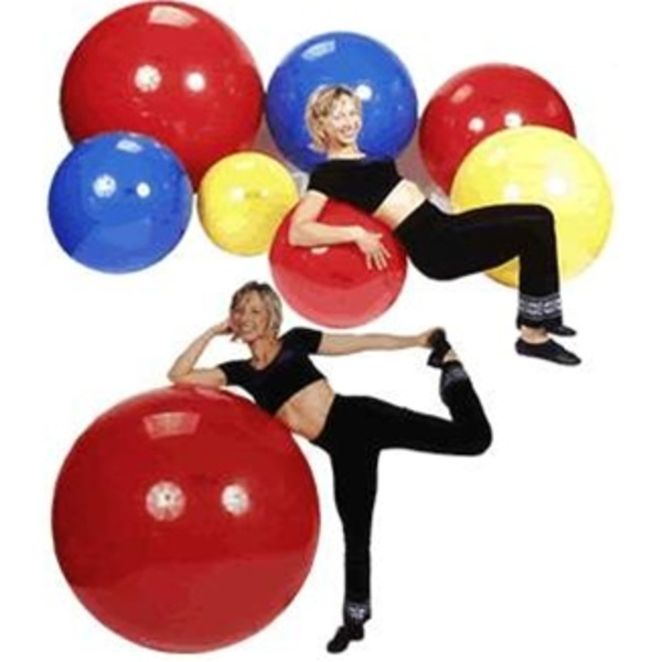 Gymnic Exercise Balls (140 0050)