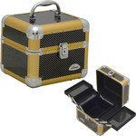 2-Tiers Expandable Trays Gun Metal Fiber Makeup Beauty Train Case (C0010ASGL)