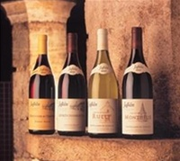 09/03/11 - Tasting of Burgundy's Exquisite Domaine Jaffelin from the Heart of Beaune