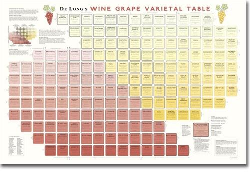 De long s wine grape varietal table large format chart