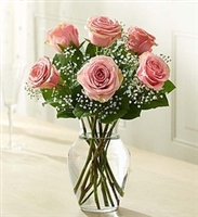 Six Pink Roses in a Vase