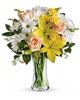 Teleflora's Daisies and Sunbeams