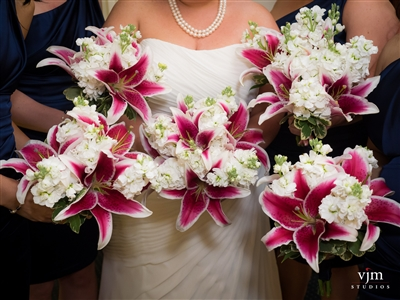 Stargazer Wedding