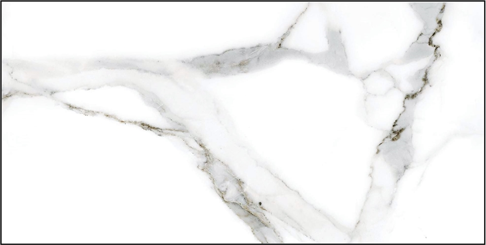"Alsacia Porcelain Tile 12"" x 24"" Marble Look Porcelain Tiles Atlanta Suwanee Johns Creek Georgia"