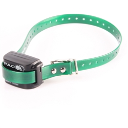 This is a picture of the PAC buzz vibration only collar