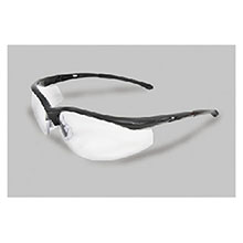 Radnor Safety Glasses Series Black 64051306