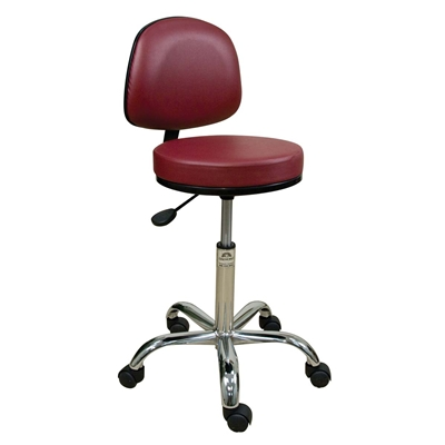 Oakworks Professional Stool with Back Rest