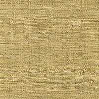 Elitis Madagascar VP 602 02.  Golden honey hand woven texture vinyl wallpaper.  Click for details and checkout >>