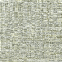 Elitis Madagascar VP 631 34.  Soft green hand woven texture vinyl wallpaper.  Click for details and checkout >>