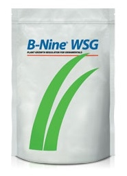 B-Nine WSG Plant Growth Regulator - 1 Lb.