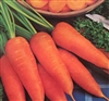 Carrot Danvers Half Long Seed - 1 Packet