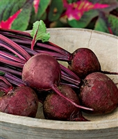 Beets Detroit Dark Red Seed Heirloom - 1 Packet