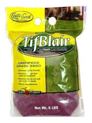 Tifblair Centipede Grass Seed (Certified) - 5 Lbs.