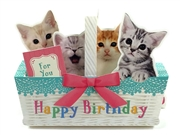 Kitties In Basket Happy Birthday Pop Up MelodyCard
