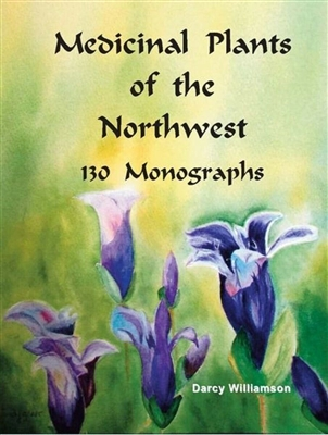 Lyme Recovery Book