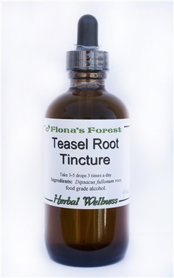 Teasel Root Tincture