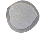Hosta leaf concrete or plaster mold 1250