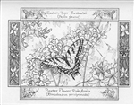 Butterfly Note Cards by Artist Linda Cook DeVona - 6 Note Cards
