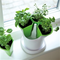 Self Watering Herb Pot - Made in the UK