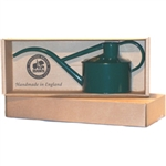 Haws Indoor metal watering can, in green. Gift boxed