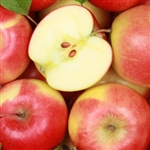 Apple Extract - Water Based, apple, apple fruit