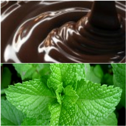 Chocolate Mint  Aroma - Oil Based