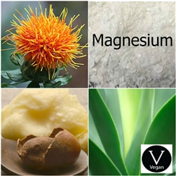 Cream / Lotion Base - Magnesium - All Natural
