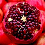 Pomegranate Aroma - Oil Based