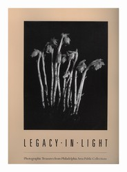 Legacy in Light