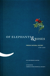 Of Elephants & Roses: