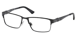 Polo 1147 Eyeglasses