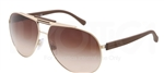 Dolce & Gabbana DG 2119 Over Molded Rubber Sunglasses 119013 Gold,