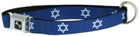 star of david dog collar and leash set