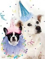 dog birthday party hat