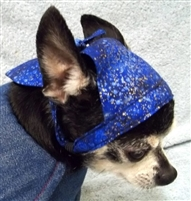 blue galaxy doo rag for dogs