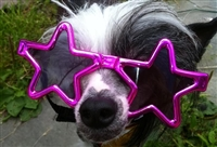 star shaped dog sunglasses